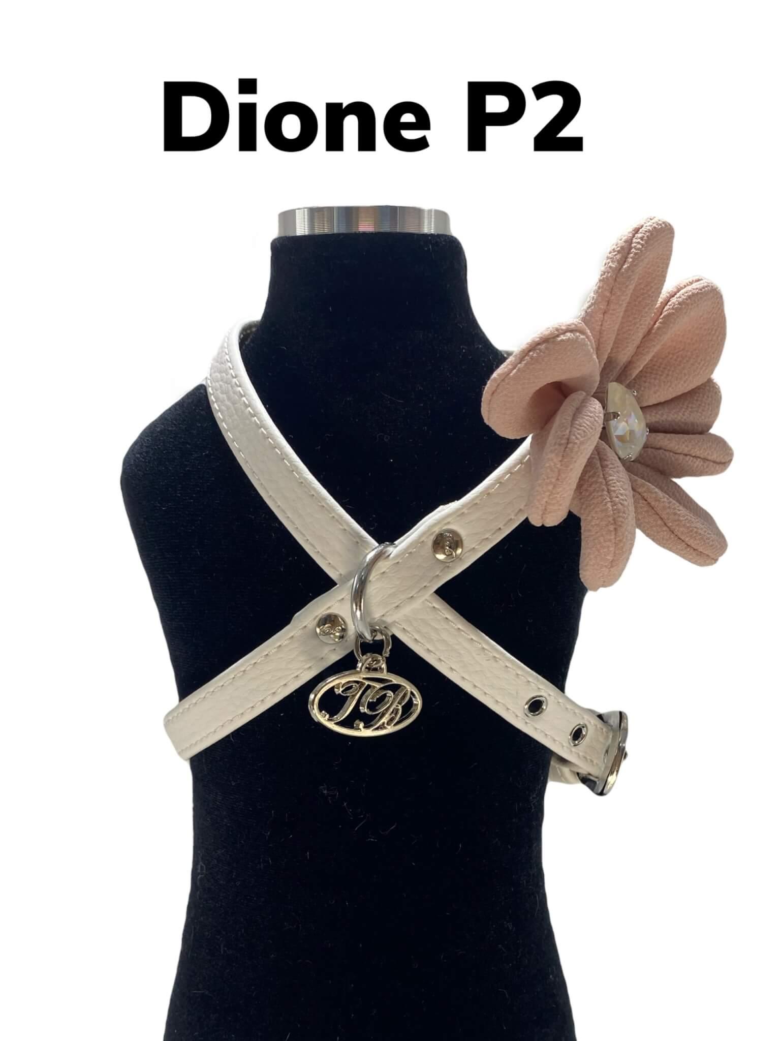 DIONE P2 15 CON NOME